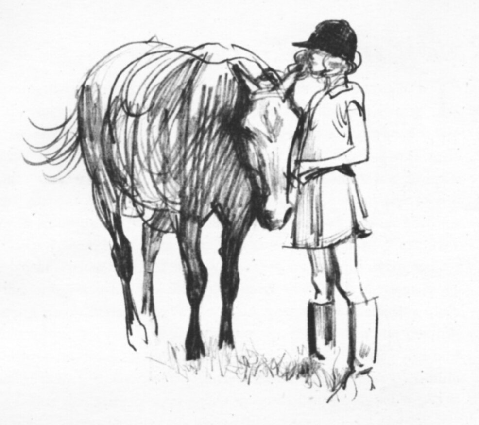 Drawing Girl And Horse How To Draw Girl Anime Step