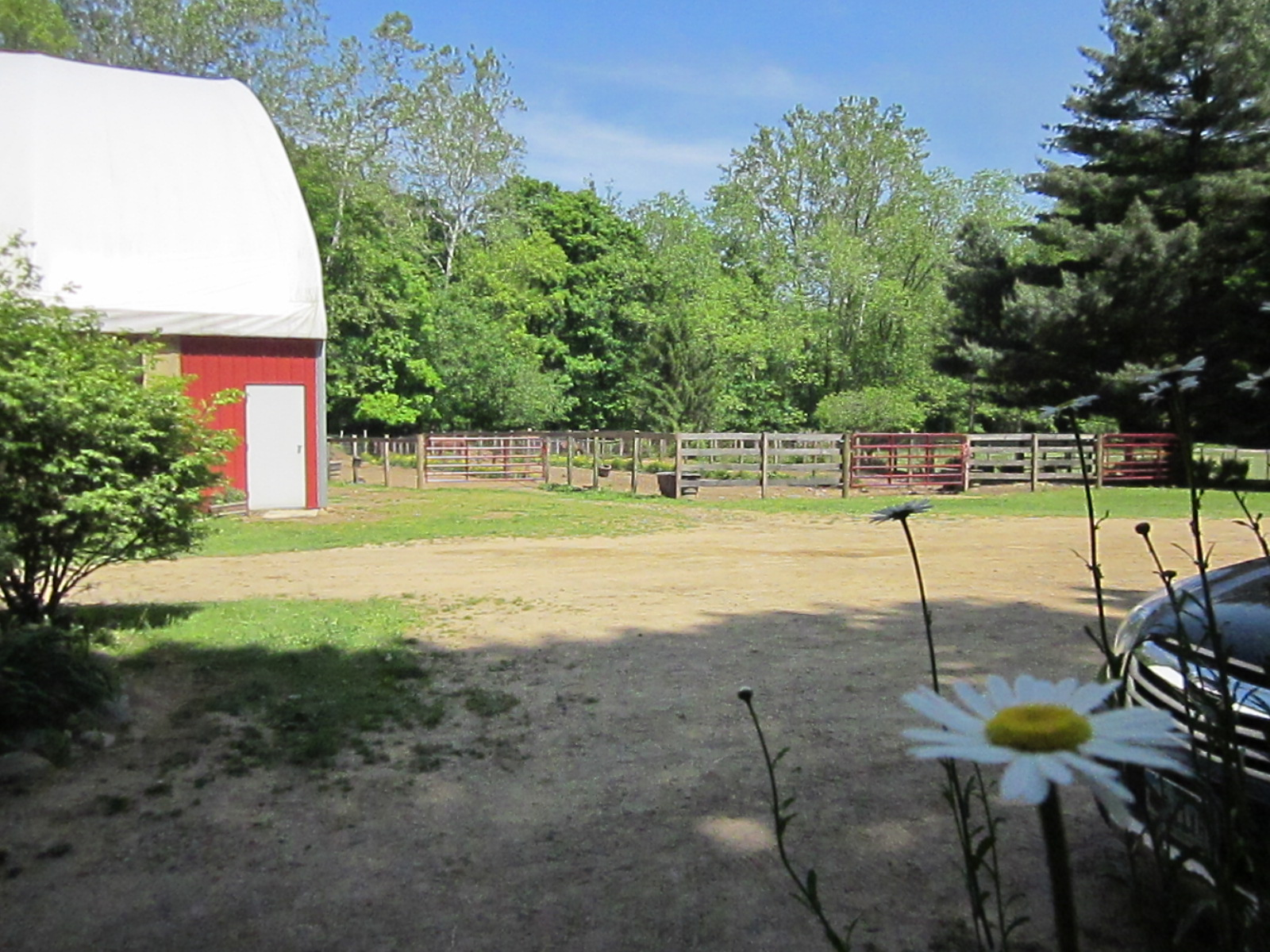 Hidden Hollow Farm Photos (22)